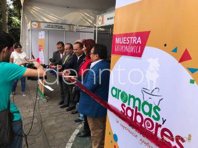 Desarrollo y montaje de Expos: Canirac
