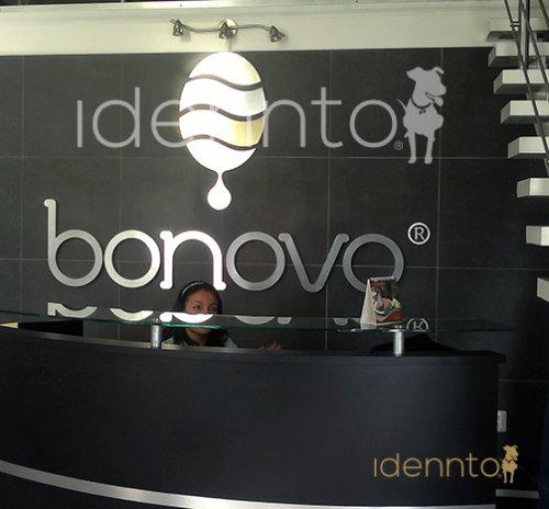 Desarrollo de Marca Integral: Bonovo