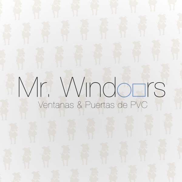 Mister Windoors